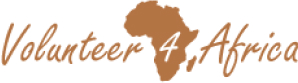 Volunteer4Africa logo